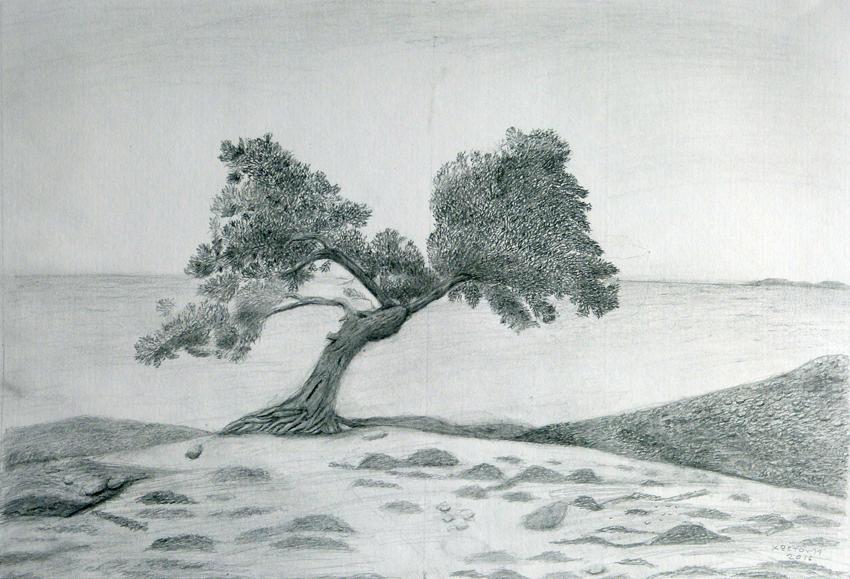 Έκθεση έργων ζωγραφικής της Κωστούλας Παρασκευοπούλου με θέματα από το Σχοινούδι της Ίμβρου